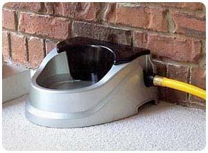 auto refilling dog bowl