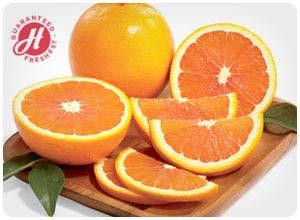 hale groves naval oranges