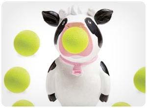 hog wild cow popper