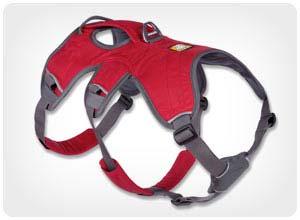 web master harness