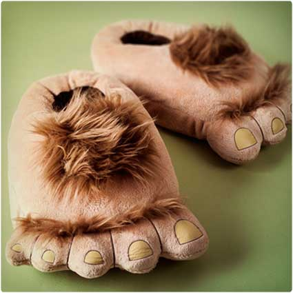 slippers from the shire