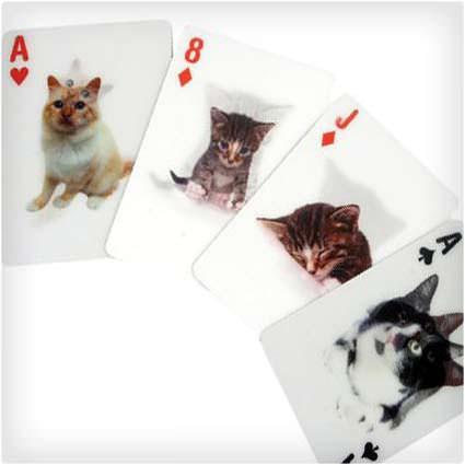 3-D חתול משחק קלפים