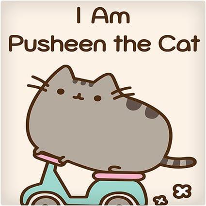 Cute Fat Cat Pusheen Game