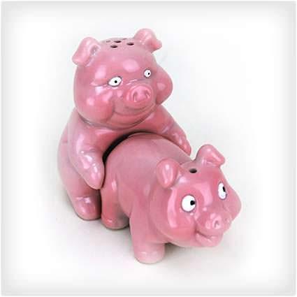 50 hilariously wacky white elephant gifts naughty pigs salt and pepper shaker set negle Choice Image