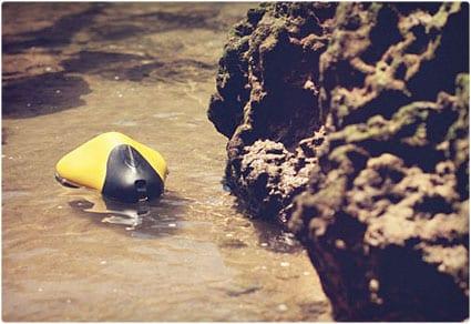 ziphius aquatic drone