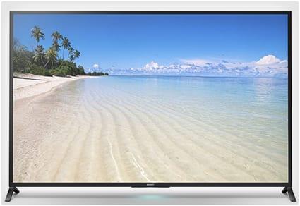 70 Inch Big Screen