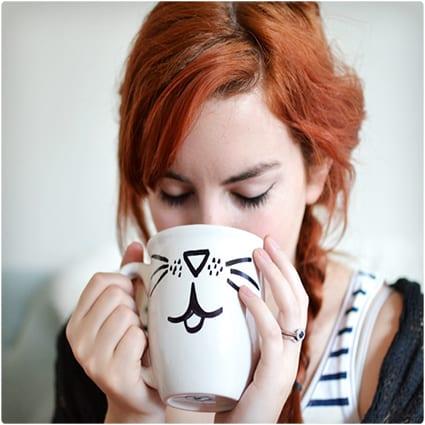 DIY Animal Mugs