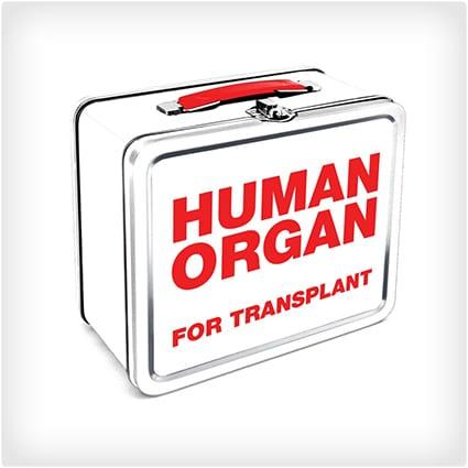 Human Organ Lunch Box