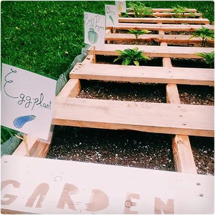 Pallet Garden Tutorial