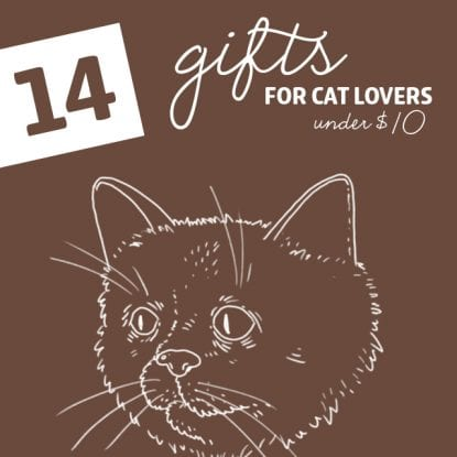 14 Cool Gifts for Cat Lovers- under 10 dollars.