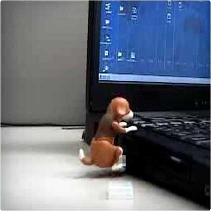 Humping-USB-Dog