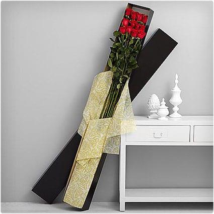5 Foot Roses