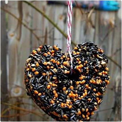 Heart-Shaped-Birdseed-Cakes