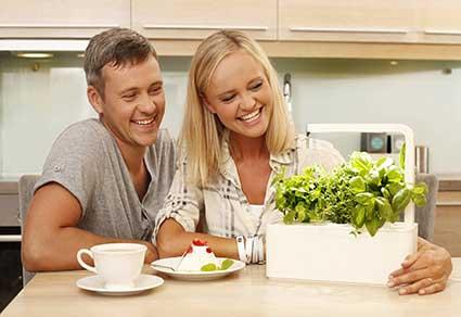 Click-and-Grow-Smart-Indoor-Herb-Grow-Kit