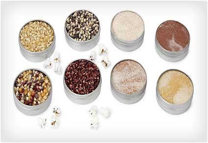 Popcorn Kernel Seasoning Sets