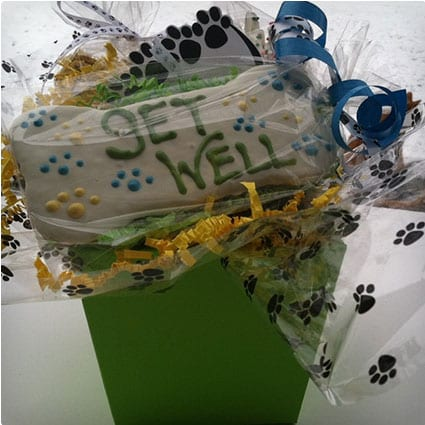 Get Well Gift Basket for Dogs