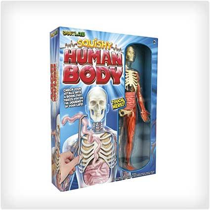 Squishy-Human-Body