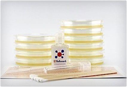 EZ BioResearch Bacteria Science Kit