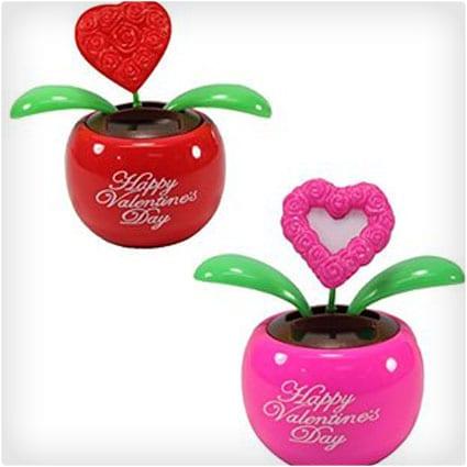 Lover's Gift Set