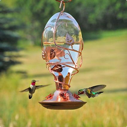 Looking Glasss Hummingbird Feeder