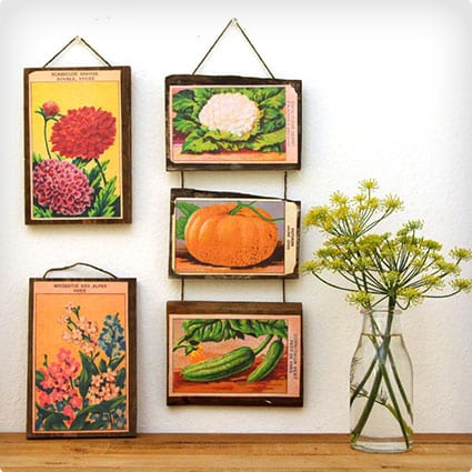 Seed Packet Art