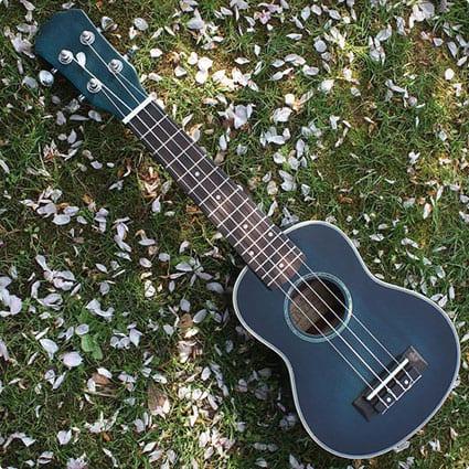 Gorgeous 21 Rosewood Ukulele 4 String