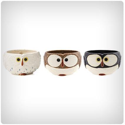 Pwl Mug