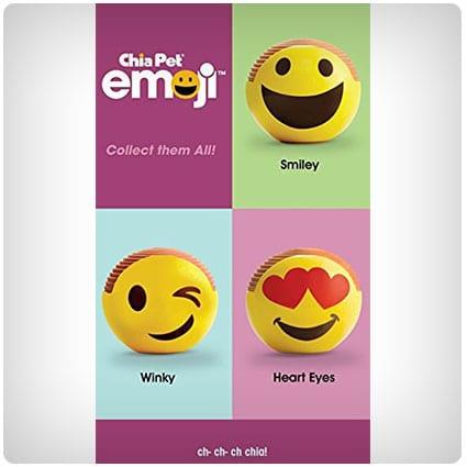 Chia Emoji Smiley Handmade Decorative Planter, Yellow