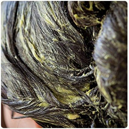 Rosemary Avocado Coconut Oil Hair Mask