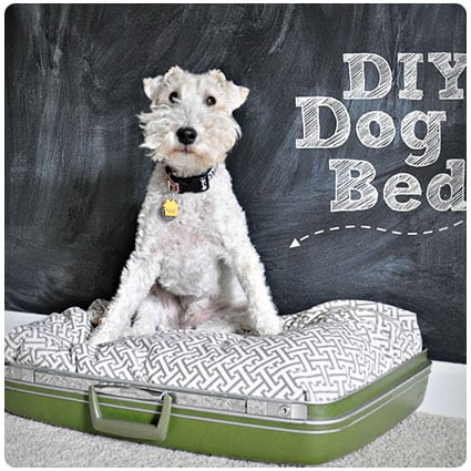 Diy Suitcase Dog Bed