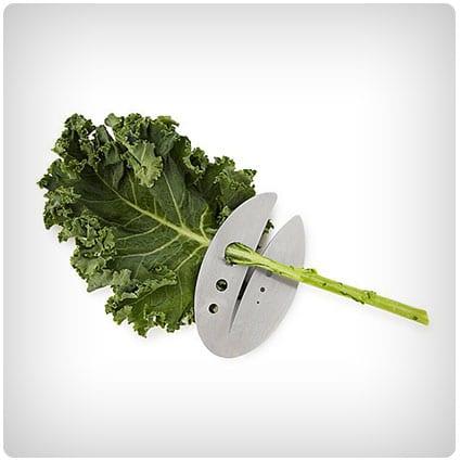 Kale & Herb Razor