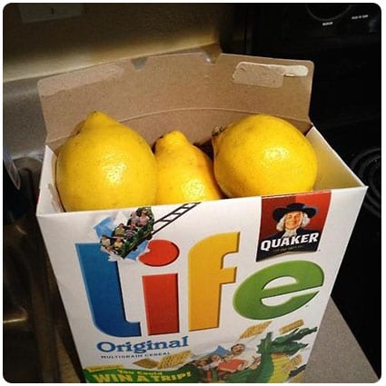 When Life Gives You Lemons Idea