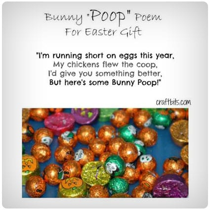 37 hilarious gag easter gifts for a good laugh dodo burd diy easter bunny poop poem idea negle Choice Image