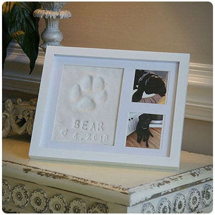 Baby Mushroom Ultimate Dog Keepsake Kit & Picture Frame