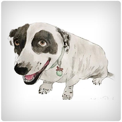 Custom Watercolor Pet Painting