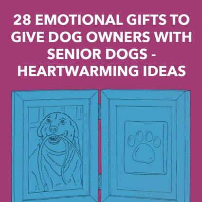 Senior Dog Gifts
