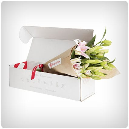 Bloomsy Box - Beautiful Flowers Every Month