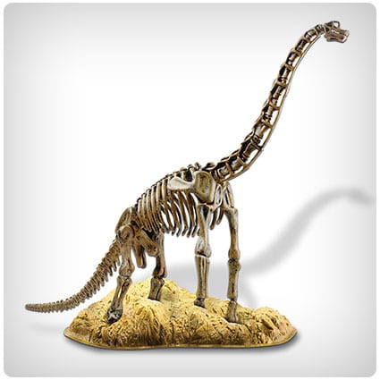 Elenco Edu-Toys Brachiosaurus Skeleton Model Kit