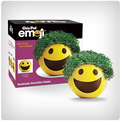Chia Pet Emoji Smiley