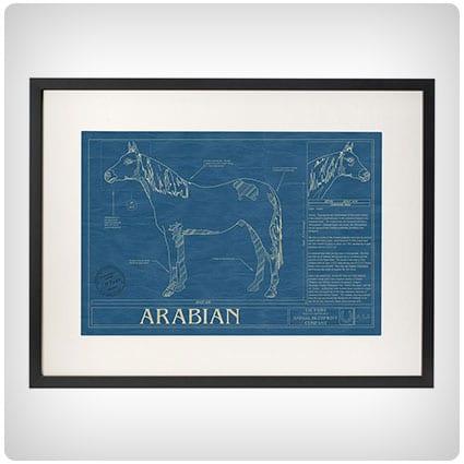 Horse Blueprint