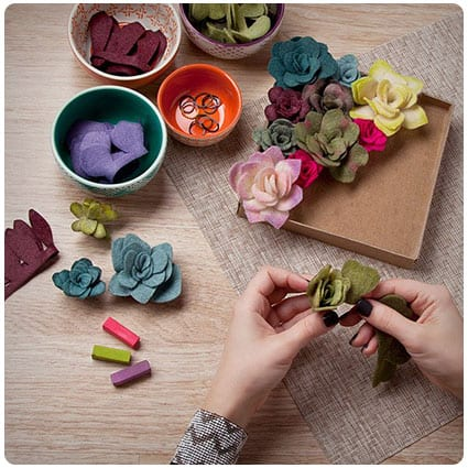 Felt Succulents Kit