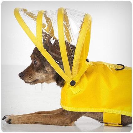 Dog Raincoat Yellow