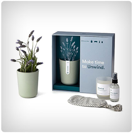 Stress Relief Lavender Gift Set