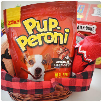 Diy Epic Dog Gift Basket