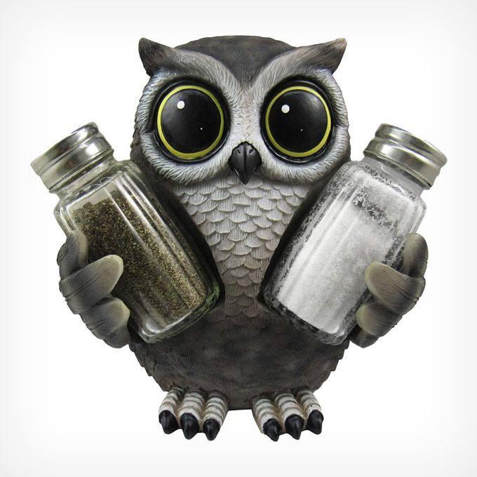 Stylish Owl Nature Print Home Gift Idea