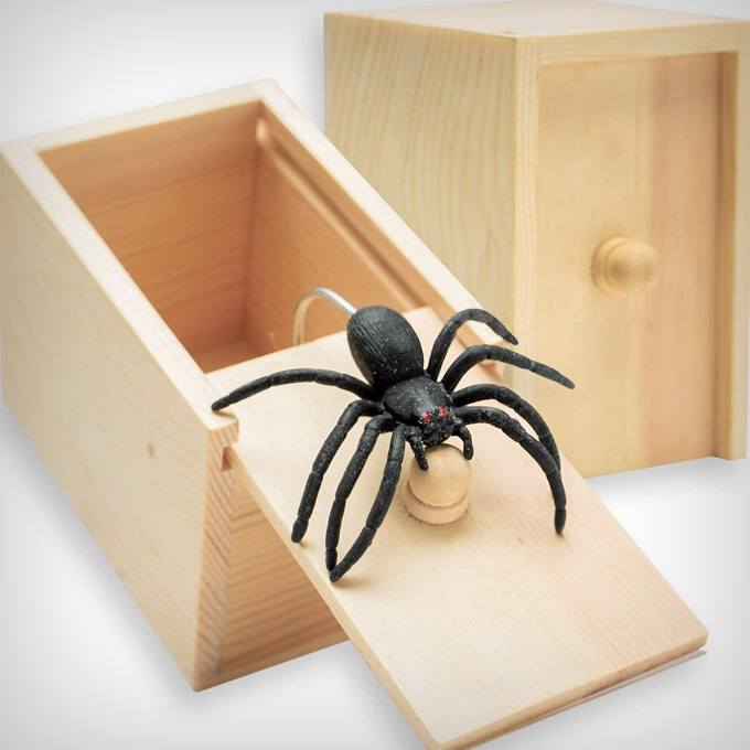 Spider In Box Gift Box