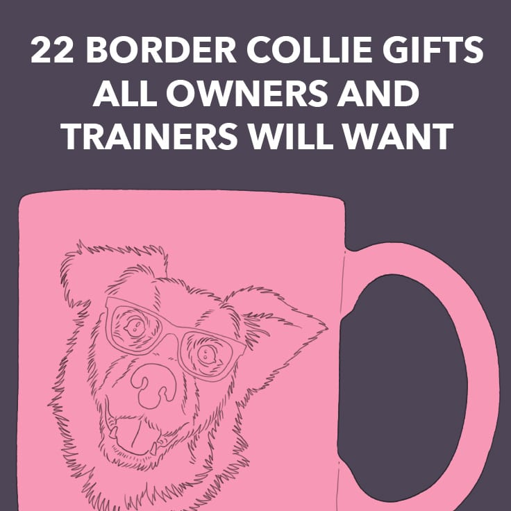 22 Border Collie Gifts All Owners and Trainers Will Want