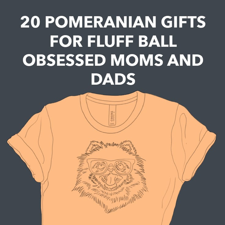20 Pomeranian Gifts for Fluff Ball Obsessed Moms and Dads
